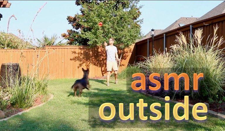 ASMR | Whisper Walk Outside with Me!