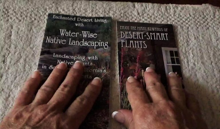 ASMR Reading and Rambling About Desert Plants